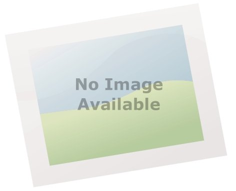 Berg 12 5ft 380cm Elite In Ground Trampoline